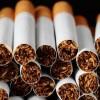 فروش مجوز سیگار سازی در شمال کشور