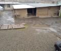 کارخانه ی قالیشویی ۳۲۳۰ متر ۶ دانگ